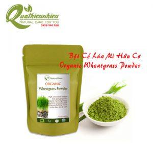 Bột cỏ lúa mì hữu cơ - Organic Wheatgrass Powder